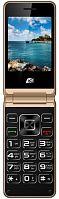 """Мобильный телефон ARK V1 золотистый раскладной 2Sim 2.4"""" 240x320 2Mpix GSM900/1800 MP3 FM microSD max32Gb"""