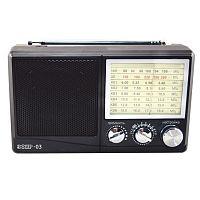 Радиоприемник портативный Сигнал Эфир-03 черный