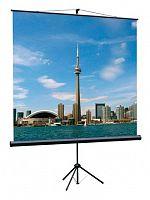 Экран на треноге Lumien 160x160см Eco View LEV-100105 1:1 напольный рулонный