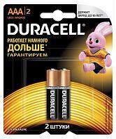 Батарея Duracell Basic CN LR03-2BL MN2400 AAA (2шт)