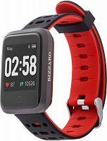 """Смарт-часы Rekam Bizzaro F610 42.6мм 1.3"""" TFT черный/серебристый (2202000014)"""