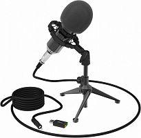 Микрофон проводной Ritmix RDM-160 25м черный